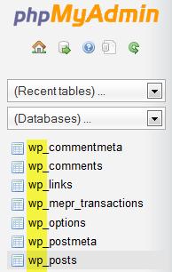 PHPMyAdmin WordPress